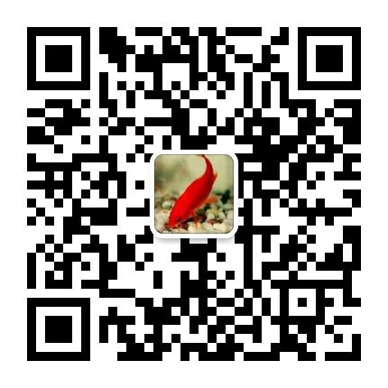 鑫创荣业公司