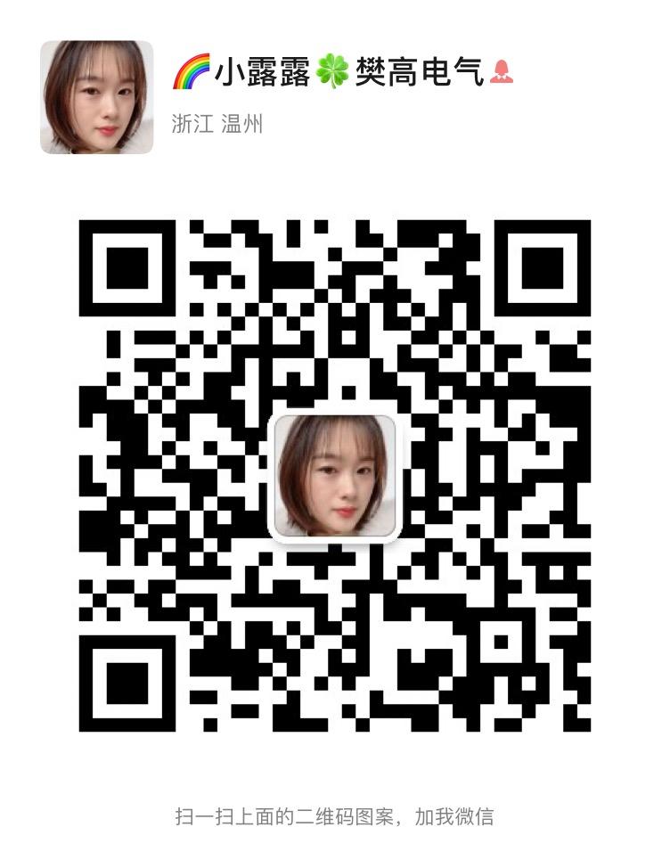 樊高电气公司销售部